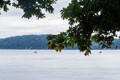 branches d'érable devant l'eau calme image stock