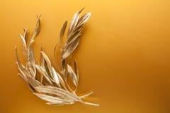 Branches d'or Photo libre de droits