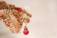 Branches d'arbre de jouet avec des jouets Images stock