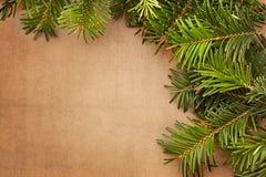 Branches d'arbre de Noël Image libre de droits