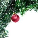 Branches d'arbre de Noël avec la babiole rouge et les flocons de neige d'isolement Photographie stock