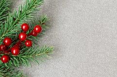Branches d'arbre de Noël et baies de houx Image libre de droits