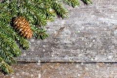 Branches d'arbre vertes avec des cônes de pin sur l'espace libre en bois de table Photos stock