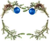 Branches d'arbre vertes avec des cônes et des boules bleues Photo stock