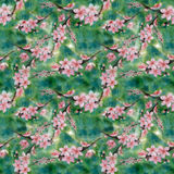 branches d'un arbre de floraison watercolor wallpaper Configuration sans joint Photographie stock