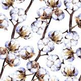 Branches d'usine de coton Répétition de la configuration watercolor Photo libre de droits