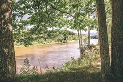 branches de chêne au-dessus de rivière d'été - effet de vintage image stock