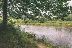 branches de chêne au-dessus de rivière d'été - effet de vintage photographie stock