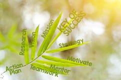 Branches de la feuille en bambou comme concept de carte d'esprit Image libre de droits