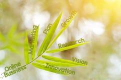 Branches de la feuille en bambou comme concept de carte d'esprit Photo libre de droits