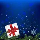Branches de neige Photographie stock libre de droits