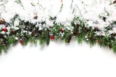 Branches de Noël couvertes dans la neige Photo stock