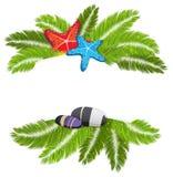Branches de paume avec les étoiles de mer et le caillou Photo libre de droits