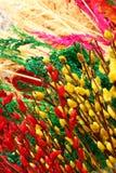 Branches de peindre saule rouge et jaune de couleurs sur un marché de fleur Photographie stock