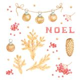 Branches de pin d'or d'aquarelle sur le fond blanc illu illustration stock