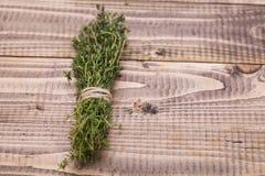Branches de romarin frais naturel Photos stock