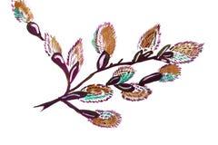 Branches de saule d'illustration Illustration Stock