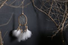Among branches Dreamcatcher weighs. dark background. white feathers royalty free stock image