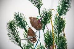 Branches du ` s Eve Fir de nouvelle année Image stock