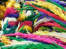branches färgrikt Fotografering för Bildbyråer