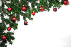 Branches of fir Stock Photography