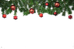 Branches of fir Royalty Free Stock Image