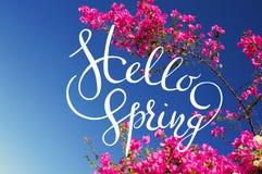 Branches fleurissantes de bouganvillée rose sur un fond de ciel bleu avec le sprint de lettres bonjour Photographie stock libre de droits