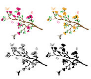 Branches Flower Decla Stock Photography