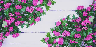 Branches of flowering hawthorn on a white wooden surface. Empty space in the middle, vintage toning Royalty Free Stock Image