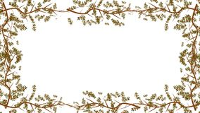 Branches And Flowers Growing Into A Frame In Alpha Channel. Flowers Growing Into A Frame In Alpha Channel stock footage