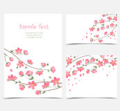 Branches with flowers Stock Images