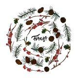 Branches from forest,pine cones and acorns. Mountain ash branches, pine cones, acorns and fir-tree branches. Hand drawn inscription - `forest` Vector Stock Images
