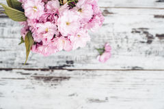 Branches of fruit tree in pink blossoms in vase on wooden table Royalty Free Stock Images