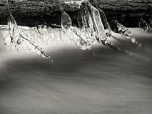 Branches glaciales au-dessus de courant de refroidissement Réflexions en glaçons Images libres de droits