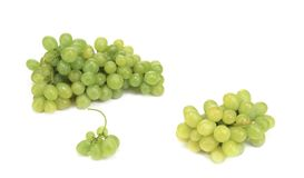 Branches of green ripe grapes. Stock Photos