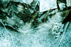 Branches in ice. Blue ice with cracks, and inside it are twigs Stock Photography
