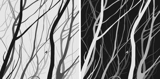Branches 2. Interlacing branches, dark and light versions, black and white colors, illustration vector illustration