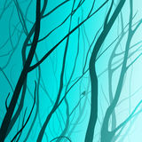 Branches. Interlacing branches, moonlight, illustration vector illustration