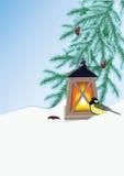Branches, lampe-torche et mésange de sapin Photographie stock libre de droits
