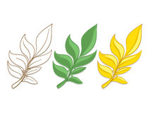 Branches of laurel vector illustration Royalty Free Stock Image