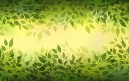 Branches and leaves. Beautiful abstract light background with branches and leaves Royalty Free Stock Photos