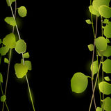 Branches with leaves on black. Vector EPS10 Stock Image