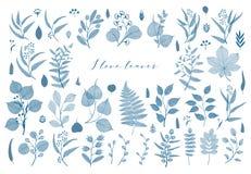 Branches and leaves, fall, spring, summer. Vintage botanical illustration, floral elements in blue color royalty free illustration