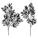 Branches leaves olive silhouette set isolated on white background. Textile design element Stock Images