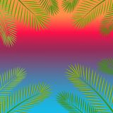 Branches and leaves of palm tree background with space for text. vector illustration