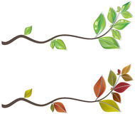 Branches of leaves Stock Photos