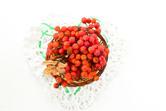 Branches of a mountain ash in the basket. White knitted heart. Stock Photo