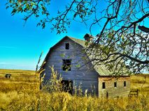Through the Branches. A old barn through the braches of life Royalty Free Stock Image