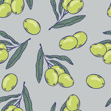 Branches of olives seamless pattern. Hand drawn food Stock Photos