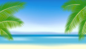 Branches of palm trees against the blue sea.